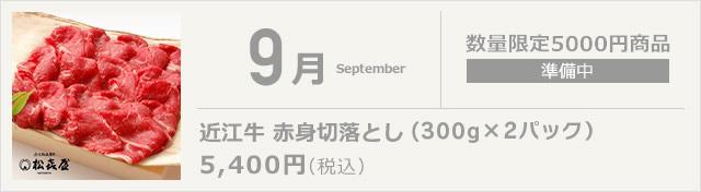 9月 近江牛 赤身切落とし(350g×2パック)